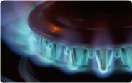 heat-resistant_13
